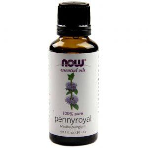 Now Foods Pennyroyal Oil 1 fl oz   Comprar Suplemento em Promoção Site Barato e Bom