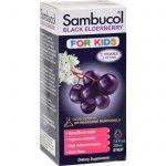 Sambucol Black Elderberry Syrup For Kids - 7.8 Oz   Comprar Suplemento em Promoção Site Barato e Bom
