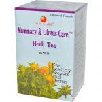 Health King, Chá Herbáceo para as Mamas e o Útero, 20 Saquinhos, 36 g (1,26 oz)   Comprar Suplemento em Promoção Site Barato e Bom