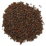 Frontier Natural Products, Semente Inteira de Mostarda Marrom, 16 oz (453 g)   Comprar Suplemento em Promoção Site Barato e Bom