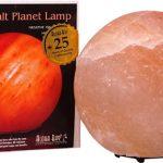 Aloha Bay Himalayan Salt Crystal Lights Planet Globe Lamp -- 1 Lamp   Comprar Suplemento em Promoção Site Barato e Bom