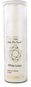 Aloha Bay Palm Wax Candle White Lotus -- 11 oz   Comprar Suplemento em Promoção Site Barato e Bom