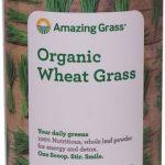 Amazing Grass Organic Wheat Grass Powder -- 17 oz   Comprar Suplemento em Promoção Site Barato e Bom