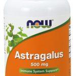 NOW Astragalus, 500 mg, 100 Caps   Comprar Suplemento em Promoção Site Barato e Bom