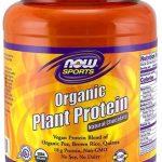 Organic Plant Protein By NOW, Natural Vanilla, 2LB   Comprar Suplemento em Promoção Site Barato e Bom