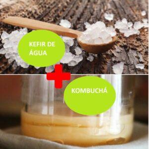 Combo – Kefir de Água + Kombuchá – com Frete Grátis